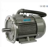 Alta efficienza con Ce TUV per il motore elettrico dei compressori