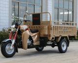 triciclo del EEC 150cc con il nuovo contenitore di carico di disegno