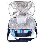 Sacchetto più freddo allineato termico portatile della famiglia, sacchetto di Tote d'avanguardia esterno del dispositivo di raffreddamento di picnic