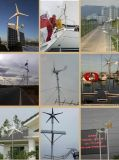 3kw 96/120/220V horizontaler Mittellinien-Wind-Generator (SHJ-WH3000)