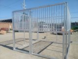 painel galvanizado 3.6m de Intervial para o estábulo econômico do cavalo