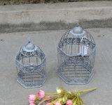 Mão - gaiola de pássaro feita do metal de Antiwhite para a HOME e o jardim