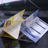 De Fabriek die van de Vlieger van de bevordering direct Pamfletten afdrukken