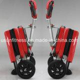 Mobilidade eléctrica dobrável de três rodas Scooters para Adulto