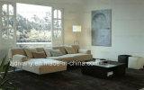Mobilia moderna del sofà del salone di stile europeo (D-79)