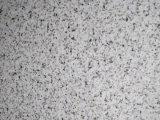Qualitäts-Marmormuster-Farbe beschichtetes Aluminiumblatt/Ring