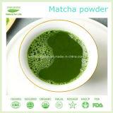 Polvere cotta a vapore superiore del tè verde dal commercio all'ingrosso di Matcha