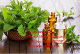 Petróleo de hierbabuena esencial del ingrediente orgánico de la hierbabuena
