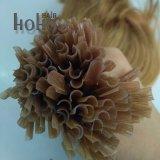Uitbreiding van het Menselijke Haar van het Uiteinde van U van 12 Duim van de hoogste Kwaliteit de Blonde Golvende