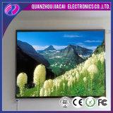 Écran polychrome de P6 DEL/Afficheur LED d'intérieur