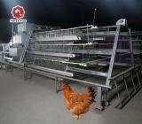 Серебряная звезда на заводе цена на выходе птицы ферма яйцо куриное слоя клеток