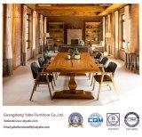 Meubles modernes de restaurant avec la présidence lombo-sacrée de restaurant (YB-R4)