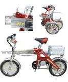 Bici elettrica (TD-204)