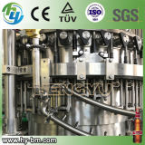 Automatic Beer Bottle Filling Line