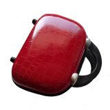 حارّ عمليّة بيع سيئات حقيبة يد مع [بو] جلد عادة علامة تجاريّة
