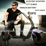 Due unità rimuovono la bici elettrica della città del motorino della batteria con il GPS