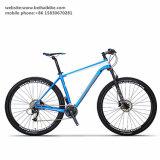 Alta calidad bici de montaña de la fibra del carbón de 29 pulgadas