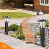 Piscine solaire pelouse lumière à LED pour jardin cour de triage de stationnement