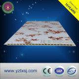 WPC dekorative Wandverkleidungs-Panels für Innendekoration