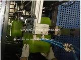 30L FLACON EN PEHD Jerrycan Machines de moulage par soufflage/baril chimique Making Machine