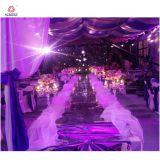Kundenspezifische s-Form-einfaches Aluminiumstadium für Hochzeit und Stab