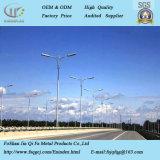 Via decorativa esterna palo chiaro del fornitore cinese LED