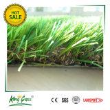 정원과 홈을%s 반대로 UV 스포츠 훈장 합성 인공적인 잔디