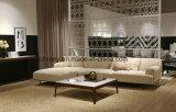 Mobilia di cuoio del sofà della casa del sofà