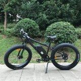 Hot Sale Fat vélo électrique pour l'homme