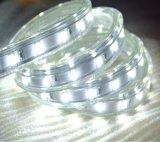 Indicatore luminoso freddo della corda di bianco LED dell'indicatore luminoso di striscia di tensione 220V LED 5630 poco costosi