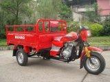 200cc Cargo Tricycle pour Hot Sale trois roues