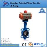 Basisrecheneinheits-Wert Dn-450 und pneumatische Stellzylinder-/pneumatisches Steuerdrosselventil