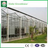 Perfil de aluminio de la agricultura de invernadero Hoja PC