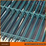 La rete fissa saldata della rete metallica progetta la rete fissa di Shengwei