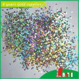 최대 유행 Luminuous 6각형 반짝임 분말
