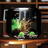 De in het groot AcrylTank van de Vertoning van de Vissen van het Aquarium