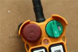 Teledirigido de radio industrial del alzamiento teledirigido sin hilos de la grúa para el carro resistente F21-14s