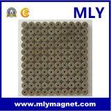 희토류 영원한 네오디뮴 철 붕소 모터 자석 (MLY094)