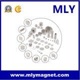 Rectanglar 또는 입방 NdFeB 강한 영원한 네오디뮴 자석 (MLY162)