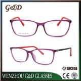 Het nieuwe Optische Frame T6009 van het Oogglas van Eyewear van de Glazen van de Manier van het Ontwerp Tr90