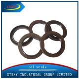 Xtsky mechanische Öldichtung (TB 38*50*7)