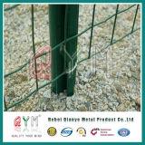 Покрынная PVC сваренная загородка ячеистой сети Голландии/загородка евро сетки Wleded