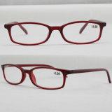 プラスチックデザイナー有名ブランド商品の光学フレームの細字用レンズ(91053)