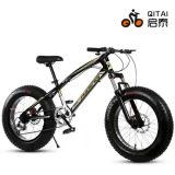 26 4.0タイヤが付いているサイズMTB山の自転車、脂肪質のタイヤの自転車