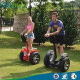 Neue elektrische doppelte Batterie-Chinaelektrischer Chariot des Roller-4000W 1266wh 72V