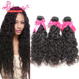 Bon Price New Style Extension de cheveux malaisienne Virgin Water Wave Hair