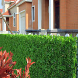 Barriera artificiale dell'erba della selezione della rete fissa di alta qualità di plastica dell'EDERA