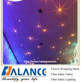 Verlichting van de Vezel van de Ster van het plafond de Optische