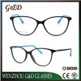 Het Populaire Tr90 Optische Frame van uitstekende kwaliteit T6007 van het Oogglas van Eyewear van Glazen