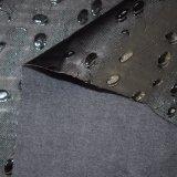 O elástico quente das cuecas imita o couro do plutônio dos carneiros para a roupa das mulheres
